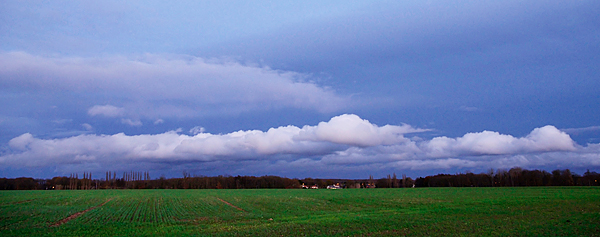 paysage 800 iso
